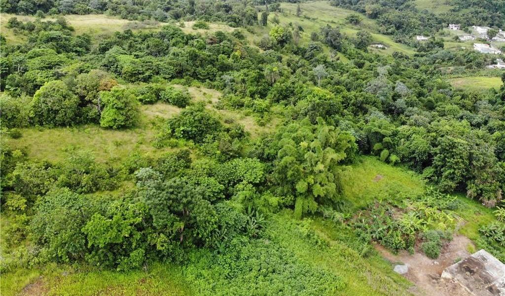 PR 110 KM 9.8 Bo. Cruz Sect. Isleta, MOCA, Puerto Rico image 3