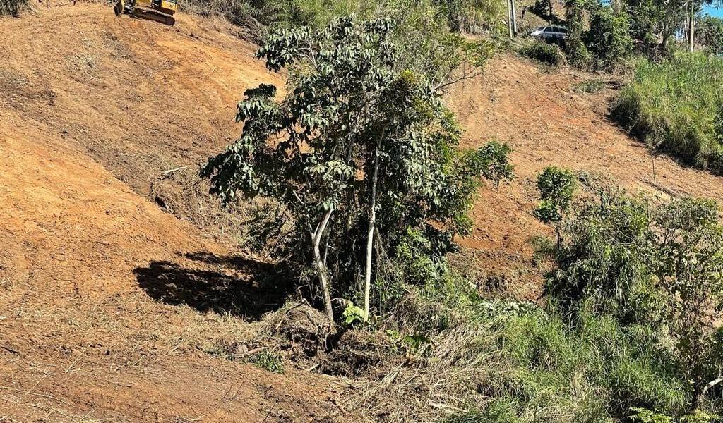 Carr 155 Km 31.5 Int Bo. Gato, OROCOVIS, Puerto Rico image 7