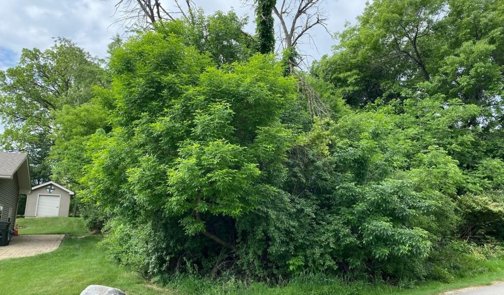 Lot 3 Pomeroy Street, West Chicago, Illinois image 3