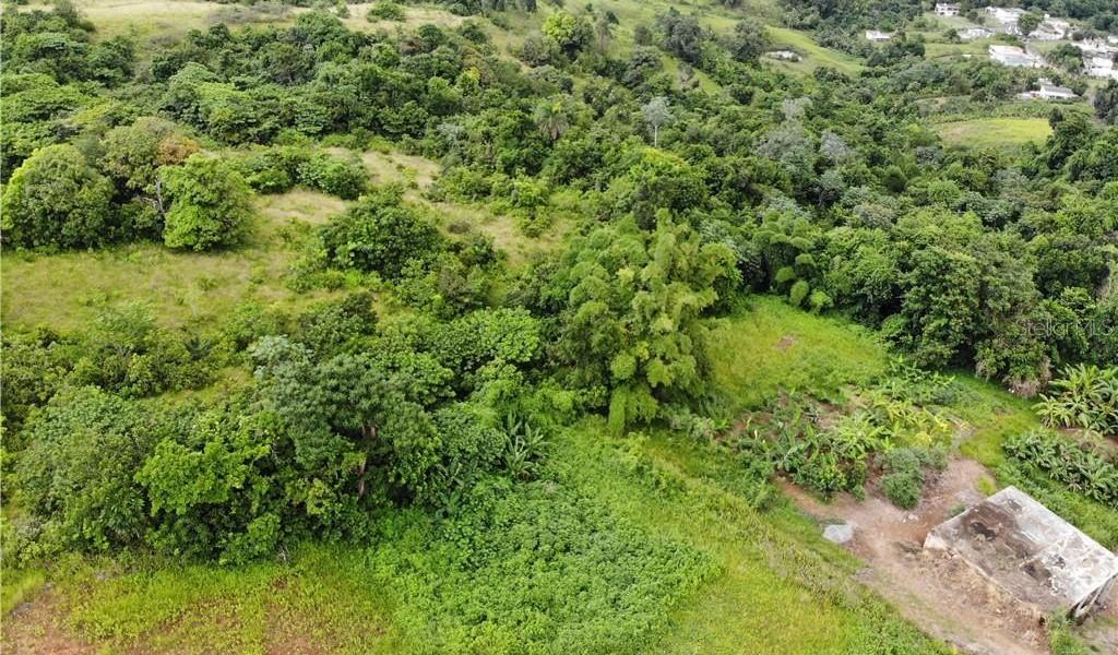 PR 110 KM 9.8 Bo. Cruz Sect. Isleta, MOCA, Puerto Rico image 6