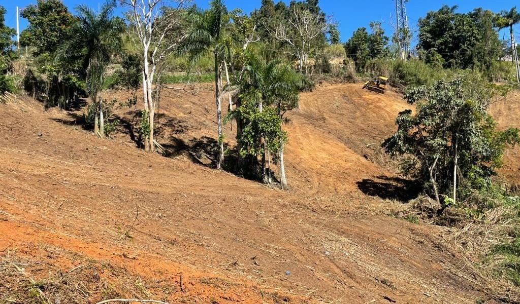 Carr 155 Km 31.5 Int Bo. Gato, OROCOVIS, Puerto Rico image 2