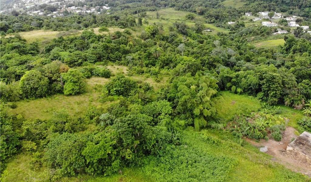 PR 110 KM 9.8 Bo. Cruz Sect. Isleta, MOCA, Puerto Rico image 5