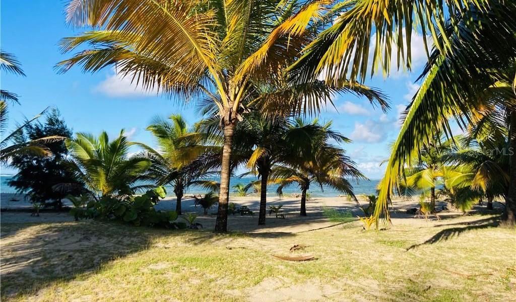Condo. Ocean Point #4602, LOIZA, Puerto Rico image 1