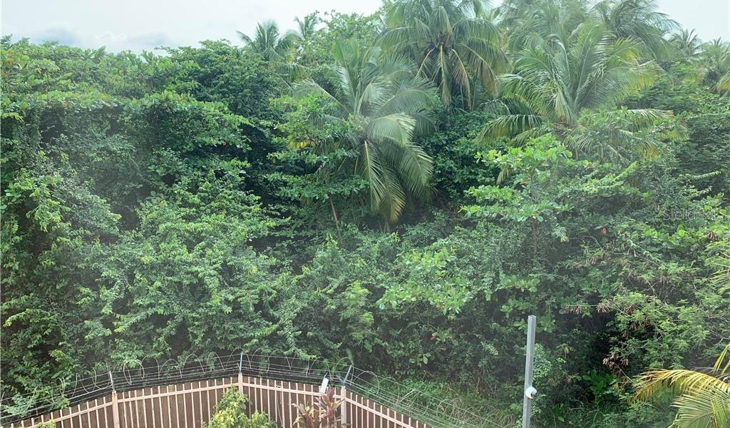 47 Ocean Drive Boulevard Drive #131, LUQUILLO, Puerto Rico image 11