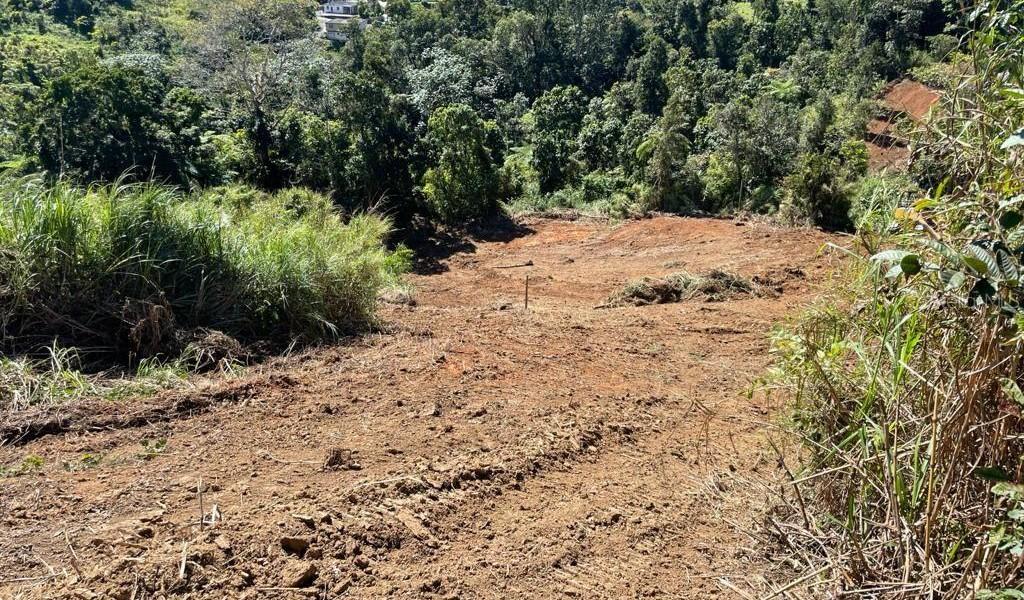 Carr 155 Km 31.5 Int Bo. Gato, OROCOVIS, Puerto Rico image 16