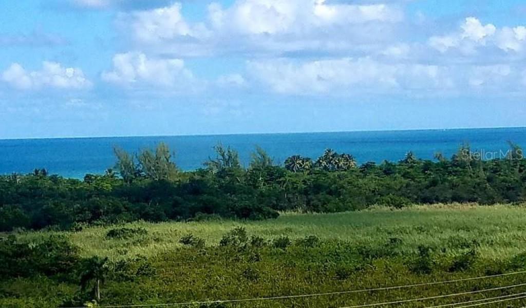 1000 -OCEAN PLAZA Ocean Drive Drive #G1403, LUQUILLO, Puerto Rico image 17