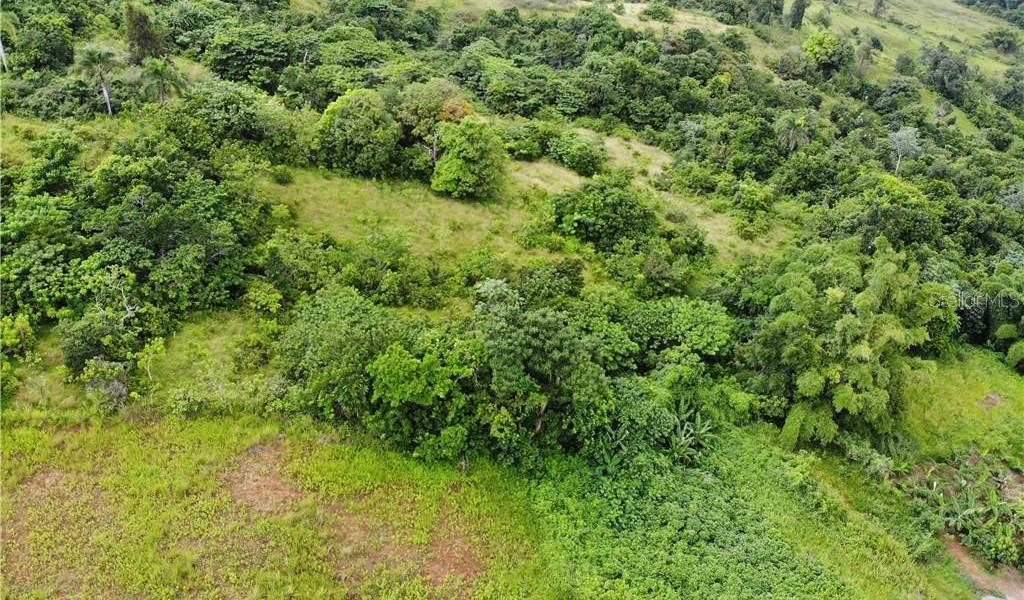 PR 110 KM 9.8 Bo. Cruz Sect. Isleta, MOCA, Puerto Rico image 4
