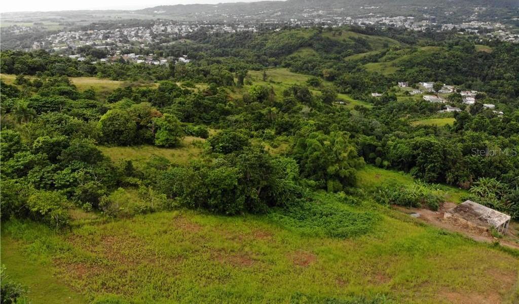 PR 110 KM 9.8 Bo. Cruz Sect. Isleta, MOCA, Puerto Rico image 1
